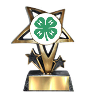 Image result for 4-H awards clip art